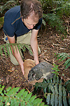 Sam Banks Releasing Mountain Brushtail Possum