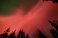 The aurora borealis, or northern lights, fill the night sky above Kenai, Alaska.