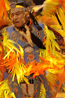 Fancy Dancer, American Indian Council Powwow, Montana State University, Bozeman, Montana
