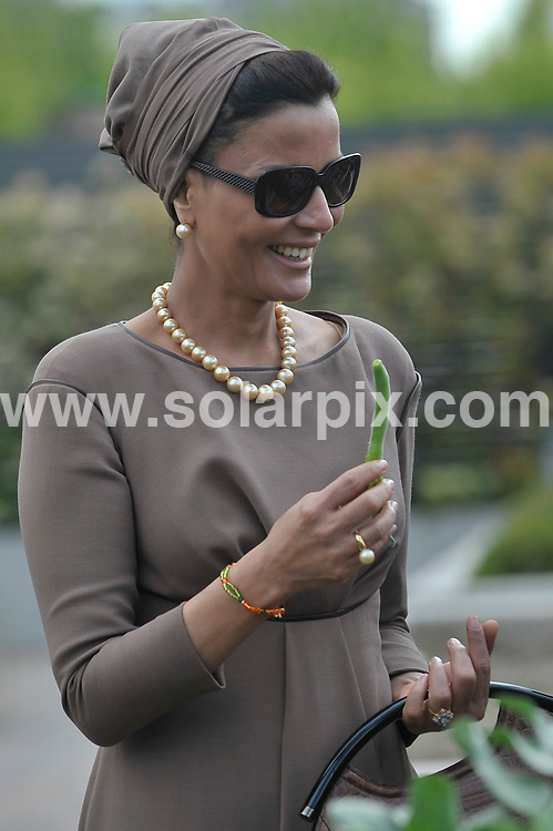 **ALL ROUND PICTURES FROM SOLARPIX.COM**                                             **WORLDWIDE SYNDICATION RIGHTS EXCEPT SPAIN - NO SYNDICATION IN SPAIN**                                                                                  Caption: Queen Sofia of Spain and the Sheikha of Qatar, Jaquesa Mozah Bint Nassar visit the Alzheimer Center of the Queen Sofia Foundation in Madrid, Madrid, Spain. 26 April 2011 This pic: Jaquesa Mozah Bint Nassar                                                      JOB REF: 13205 DMS Jesus     DATE: 26_04_2011                                                           **MUST CREDIT SOLARPIX.COM OR DOUBLE FEE WILL BE CHARGED**                                                                      **MUST AGREE FEE BEFORE ONLINE USAGE**                               **CALL US ON: +34 952 811 768 or LOW RATE FROM UK 0844 617 7637**