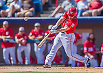 7 March 2016: Washington Nationals infielder Daniel Murphy in action during a Spring Training pre-season game against the Miami Marlins at Space Coast Stadium in Viera, Florida. The Nationals defeated the Marlins 7-4 in Grapefruit League play. Mandatory Credit: Ed Wolfstein Photo *** RAW (NEF) Image File Available ***