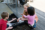 Berkeley CA Preschool teacher introducing four-year-olds to use of worms to produce worm compost (vermicompost) and worm castings from decomposing food and plant waste in a worm bin  MR