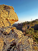 A overly expressed HDR photo of the backside of Coffee Pot Rock. High winds gave a softening effect to the leaves of the Juniper.