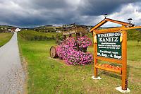 South Burgenland vineyards, Rechnitz, Austria