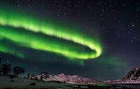The Aurora Borealis. (Photo by Travel Photographer Matt Considine)