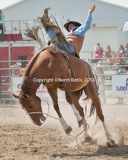 orangeville rodeo'14