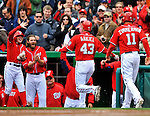 2 April 2011: Washington Nationals outfielder Rick Ankiel returns to the dugout after hitting a home run against the Atlanta Braves at Nationals Park in Washington, District of Columbia. The Nationals defeated the Braves 6-3 in the second game of their season opening series. Mandatory Credit: Ed Wolfstein Photo