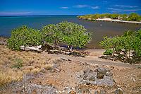 A stone leaning post overlooking the Hale o Kapuni Heiau, or the site of a submerged temple dedicated to the shark gods, Pu'ukohola Heiau National Historic Site, Kawaihae, Kohala, Big Island.