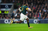 Tendai Mtawarira of South Africa goes on the attack. Old Mutual Wealth Series International match between England and South Africa on November 12, 2016 at Twickenham Stadium in London, England. Photo by: Patrick Khachfe / Onside Images