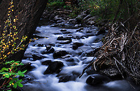 Slow motion water cascading down Eagle Creek in the Gallatin National Forest near Jardine, Montana