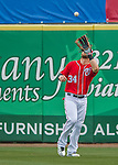 5 March 2016: Washington Nationals outfielder Bryce Harper pulls in the 3rd out of the 5th inning during a Spring Training pre-season game against the Detroit Tigers at Space Coast Stadium in Viera, Florida. The Nationals defeated the Tigers 8-4 in Grapefruit League play. Mandatory Credit: Ed Wolfstein Photo *** RAW (NEF) Image File Available ***