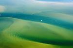 Wadden |  Wadden Sea