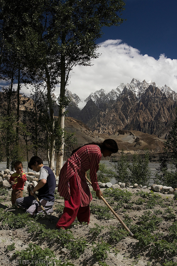 A Hunza valley family works the fields with the peaks of The Cathedral in the background.  Hunza is home to a large Ismaili/Aga Khani community that is known for its unique culture, high level of education and respect for the natural environment.
