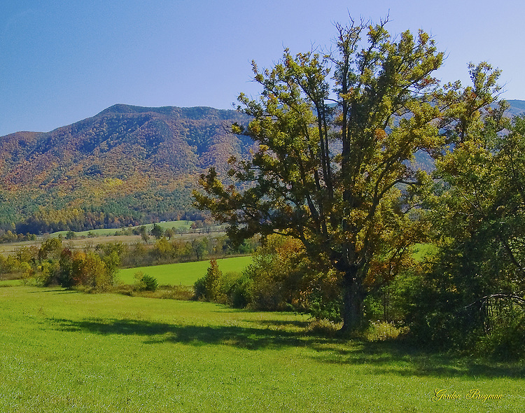 Early fall image of Cades Cove, GSMNP.