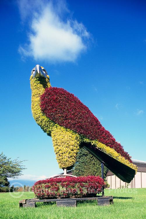 Eco Sculpture, Burnaby Lake Regional Nature Park, Burnaby, BC, British Columbia, Canada - Topiary Eagle Bird Sculpture, Public Art Display, Urban Artwork