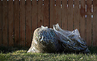 Think green when doing yardwork - plastic bags, grass clippings and fence.