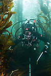 LA Waterkeeper diver follows transect line while doing site survey in kelp forest, Long Point, CA