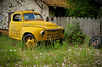 Idaho, North, Sagle. A vintage yellow Studebaker truck by a rustic fence.