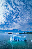 Glacier iceberg, altocumulous clouds, Prince William Sound, Alaska