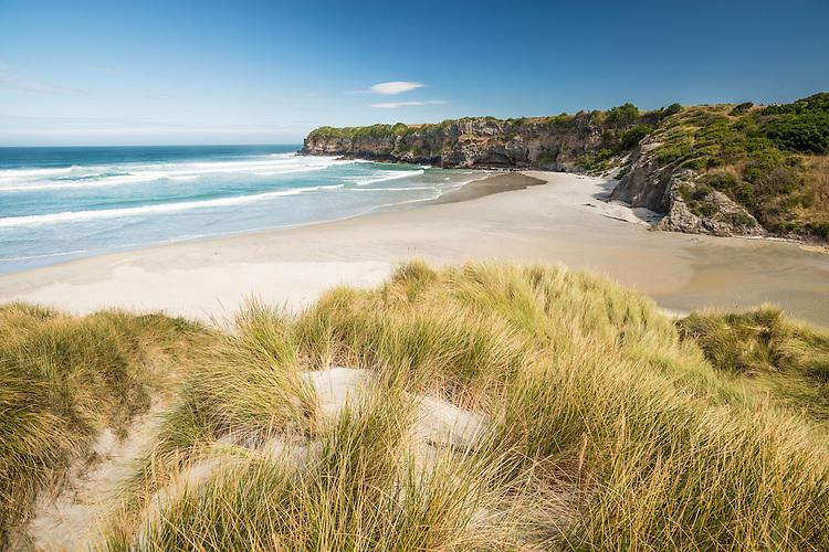 Tomahawk Beach, Coastal Otago, New Zealand - stock photo, canvas, fine art print