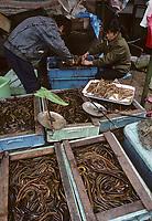 Asie/Chine/Jiangsu/Env Nankin&nbsp;: March&eacute; libre de la rue Shan-Xi - Marchand d'anguilles<br /> PHOTO D'ARCHIVES // ARCHIVAL IMAGES<br /> CHINE 1990