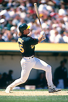 OAKLAND, CA - Mark McGwire of the Oakland Athletics in action during a game at the Oakland Coliseum in Oakland, California in 1997. Photo by Brad Mangin