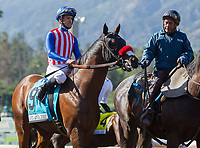 ARCADIA, CA APRIL 8: #9 Iliad ridden by Flavien Prat in the post parade before the Santa Anita Derby (Grade l) on April 8, 2017 at Santa Anita Park in Arcadia, CA. (Photo by Casey Phillips/Eclipse Sportswire/Getty Images)