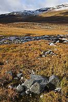 Autumn view of landscape along Kungsleden trail, Lapland, Sweden