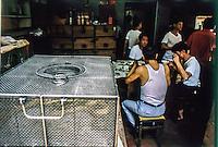 negozio di serpenti a Canton, con annesso ristorante  1986<br /> shop snakes in Canton , with restaurant