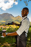 South Africa-Cape Winelands-Delaire Graff-Misc.