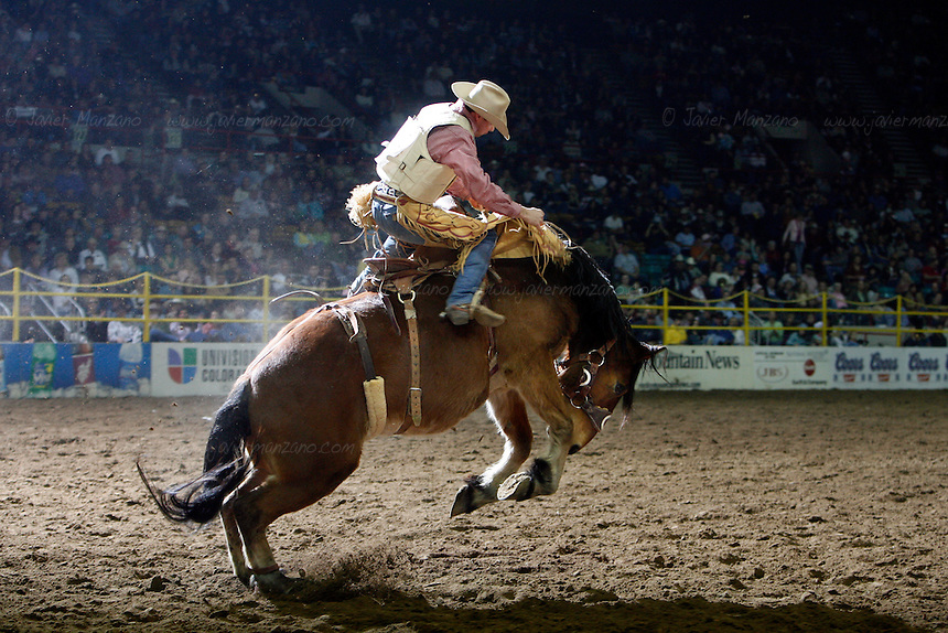 Chad Ferley (cq), from Oelrichs, South Dakota tries his luck at the Saddle Bronc Riding event as part of the National Western Rodeo Finals at the Denver Coliseum on Sunday, January 27, 2008..(JAVIER MANZANO / ROCKY MOUNTAIN NEWS).Chad Ferley (cq)....