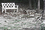 An old bench sitting among large oak trees in fall near the edge of a lake for viewing