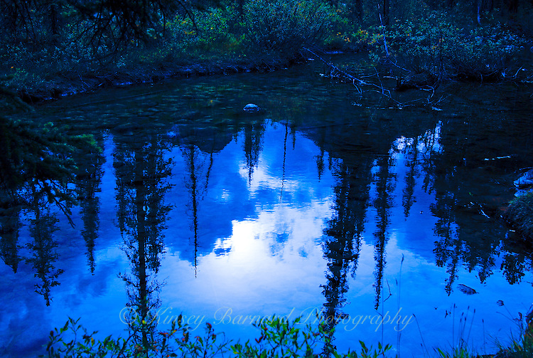 &quot;EVENING REFLECTIONS&quot;<br />