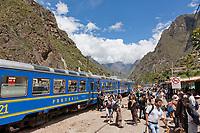 Train along the Urubamba river, the access route to Machu Picchu, Peru, South America.