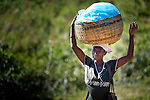 A woman walks along a road near Despagne, an isolated village in southern Haiti where the Lutheran World Federation has been working with residents to improve their quality of life. She is on her way to the weekly market in a nearby village.