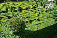 Maze Gardens & Knot Patterns Stock Photo Image Pictures