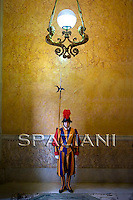 Pontifical Swiss Guard.The Corps of the Pontifical Swiss Guard or Swiss Guard,Guardia Svizzera Pontificia,responsible for the safety of the Pope, including the security of the Apostolic Palace. It serves as the de facto military of Vatican City.. on November 14, 2009 .