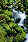 Waterfalls in Oregon State