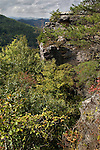 The Breaks Interstate Park on the Virginia-Kentucky border (Virginia side)  It overlooks the Russell Fork River in a gorge 1730 feet deep. Daniel Boone is credited with discovering The Breaks in 1767 as he attempted to find ever-improved trails into Kentucky and the Ohio River Valley beyond. Passes through these rugged mountains were called &quot;breaks&quot; by early settlers. The Breaks was one of only a handful of narrow passageways through 125-mile-long Pine Mountain.Virginia Scenics, Southwest Virginia..