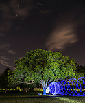 Light Painting and orbs in local park in Glebe, Sydney, NSW, Australia