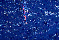 Aerial view of the women's outrigger canoe race from Molokai to Oahu