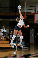 UVa Volleyball Swimming Track Field Hockey Softball Wresting Golf Sports 2004-08