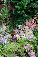 Firewood cut logs with Astilbe and flowering spring plants, ferns, dogwood tree, willow fence, in late spring early summer flower garden