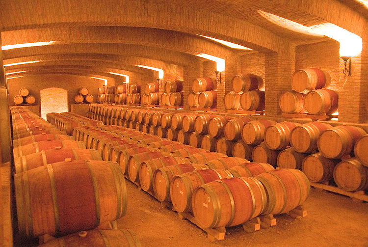 Chile Wine Country: Barrels at Undurraga Winery, Vina Undurraga, near Santiago..Photo #: ch440-32844..Photo copyright Lee Foster, 510-549-2202, www.fostertravel.com, lee@fostertravel.com.