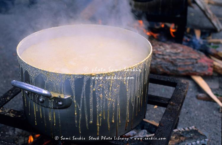 Wonderful Used Restaurant Equipment Madison Wi #2: RM-Cooking-Gas-Stove-Mardi-Gras-Pot-Steam-PRO204.jpg