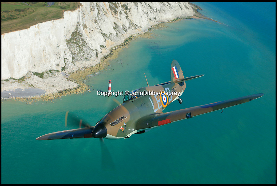BNPS.co.uk (01202 558833)<br /> Pic: JohnDibbs/Osprey/BNPS<br /> <br /> Hurricane AE977 still patrolling the White Cliffs of Dover in the famous markings of legless ace Douglas Bader.<br /> <br /> Last of the Few - A photographer's stunning new book is a tribute to the last Hawker Hurricane's - the true workhorse of the Battle of Britain.<br /> <br /> Only 13 WW2 Hurricanes are still airworthy today, compared to over 60 of their more glamorous counterpart the Spitfire.<br /> <br /> But during the Battle of Britain there were in fact twice as many Hurricane's as Spitfires taking on Hitlers Luftwaffe in the skies over southern England.<br /> <br /> The Hurricane may be viewed as less glamorous than the Spitfire, but these stunning photographs reveal just how majestic it was in full flight.<br /> <br /> Photographer John Dibbs has got up close and personal to the legendary fighter planes in order to capture them like never before.<br /> <br /> His 10 year quest for surviving Hurricanes took him all over the world and he photographed them in England, France, the United States and New Zealand.<br /> <br /> Using the skill and experience of highly experienced RAF and civilian pilots, Mr Dibbs was able to fly to within 15ft of some of the last remaining Hurricanes - with breath-taking results.<br /> <br /> There was a fair degree of skill involved as he took the photos from the canopy of a Second World War trainer aircraft which was travelling at 200mph while confronting wind blast.<br /> <br /> The thrilling photos were taken for an a definitive history of the Hurricane which is told by Mr Dibbs and aviation historians Tony Holmes and Gordon Riley in their new book Hurricane, Hawker's Fighter Legend.
