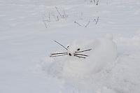 Kinder bauen einen Hasen, Hase aus Schnee