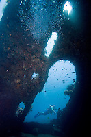 September 13th 2007- Bali, Indonesia- A dive site known as Liberty wreck, which is located near the Tulamben area of North East Bali. BaliÕs signature dive site, the Liberty wreck came about, when U.S. forces deliberately beached the U.S.S. Liberty, a cargo ship, on its black-pebble shores during World War II, to stop it falling into the hands of the Japanese. The ship sat on the beach until nearby Mount Agung erupted in 1967, pushing the wreck into the sea.  The ship is now almost perfectly positioned, with the top of its masts just four meters from the surface, easily reached even by snorkelers. The bottom of the ship, which rests slightly on its side, still easy to reach for recreational divers at 35 meters.  Photograph by Daniel J. Groshong/Tayo Photo Group