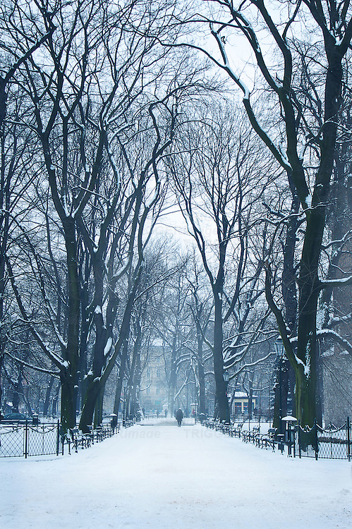 Winter scene with distant figure under trees in park