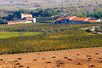 Chateau Mire l'Etang. La Clape. Languedoc. Vines grubbed up for replanting. France. Europe. Vineyard. The winery building.